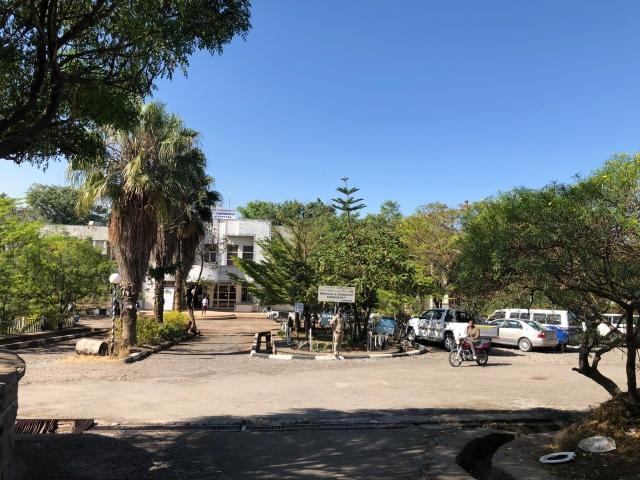 Blog – Ethiopian Diaspora Surgery Network